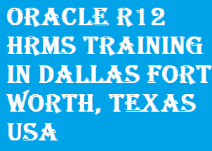 Oracle R12 HRMS Training in Dallas Fort Worth, Texas USA Course image