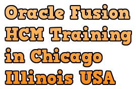 Oracle Fusion HCM Training in Chicago Illinois USA Course image